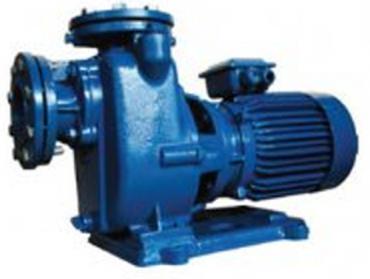 Bơm tự hút MITSUKY CNS40/2.2 3HP